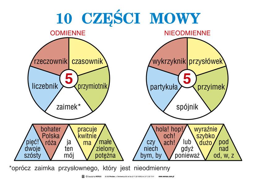 Image result for częsci mowy