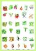warzywa-z-naszego-ogrodu-2